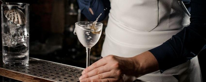 gin_spiritloversd.jpg