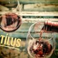 Milyen a bor, ha stílusos?