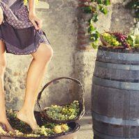 A román borász szőlőjét szűzek tapossák