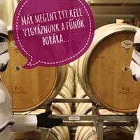 Luke-nak vörösbor, Leia-nak pezsgő, Yoda-nak grúz bor dukál
