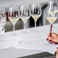Kulisszatitkok a borversenyekről