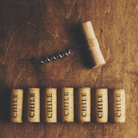 Ismerd meg a chilei borokat!
