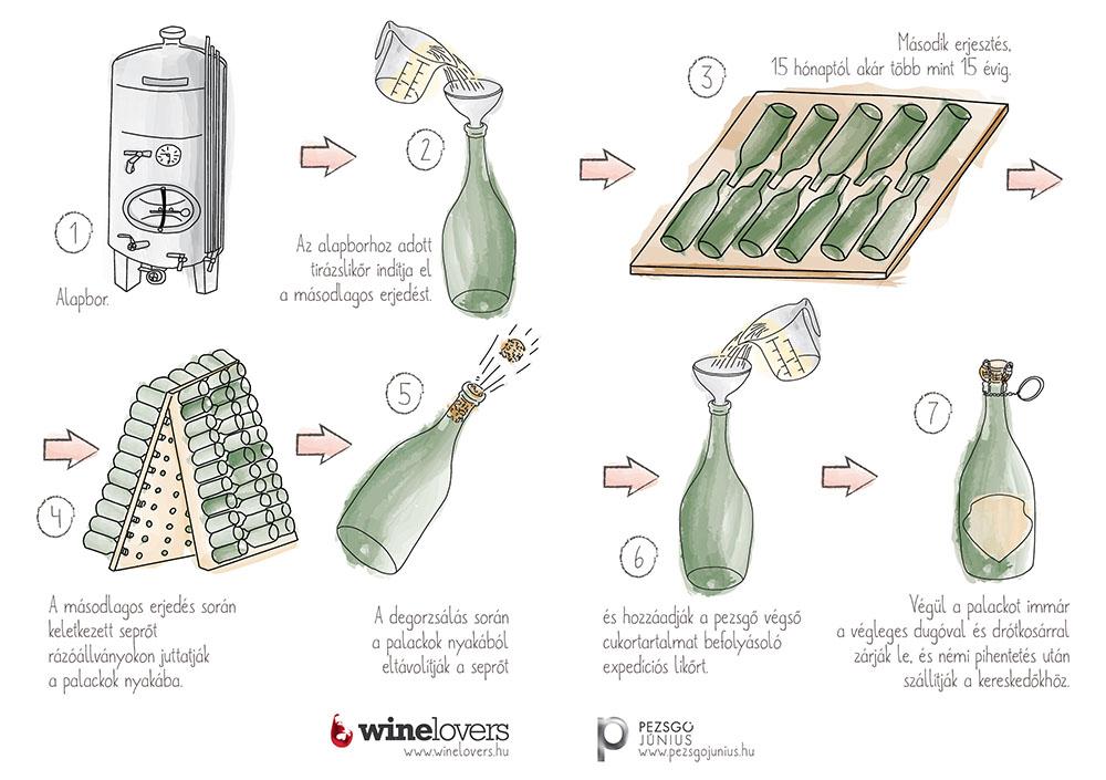 borkoll_infografika.jpg
