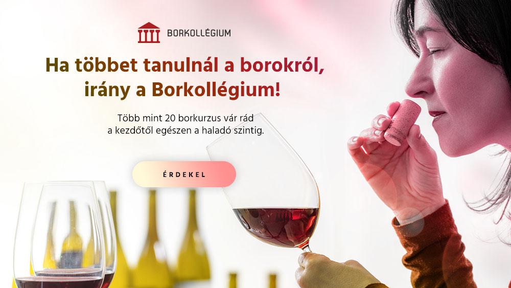 borkollegium-altalanos_1000x563.jpg