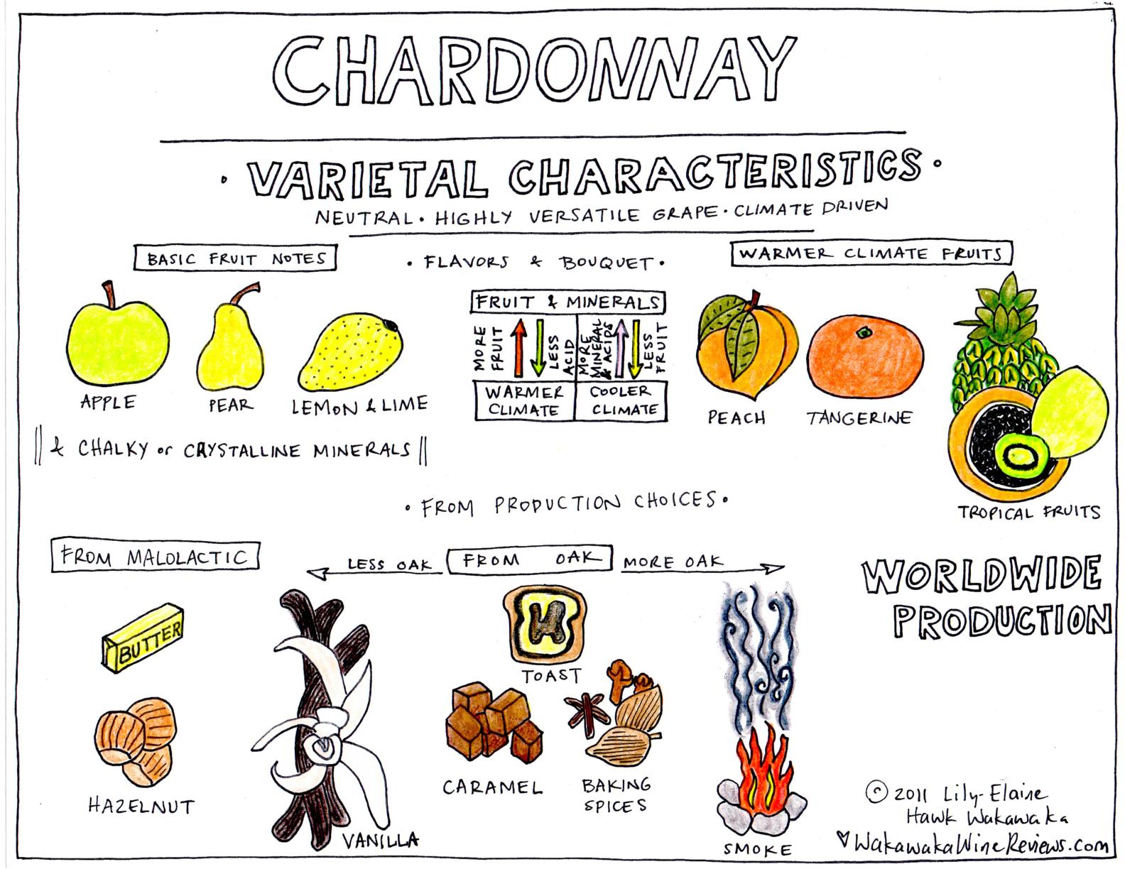 chardonnayvarietalnotes.jpg