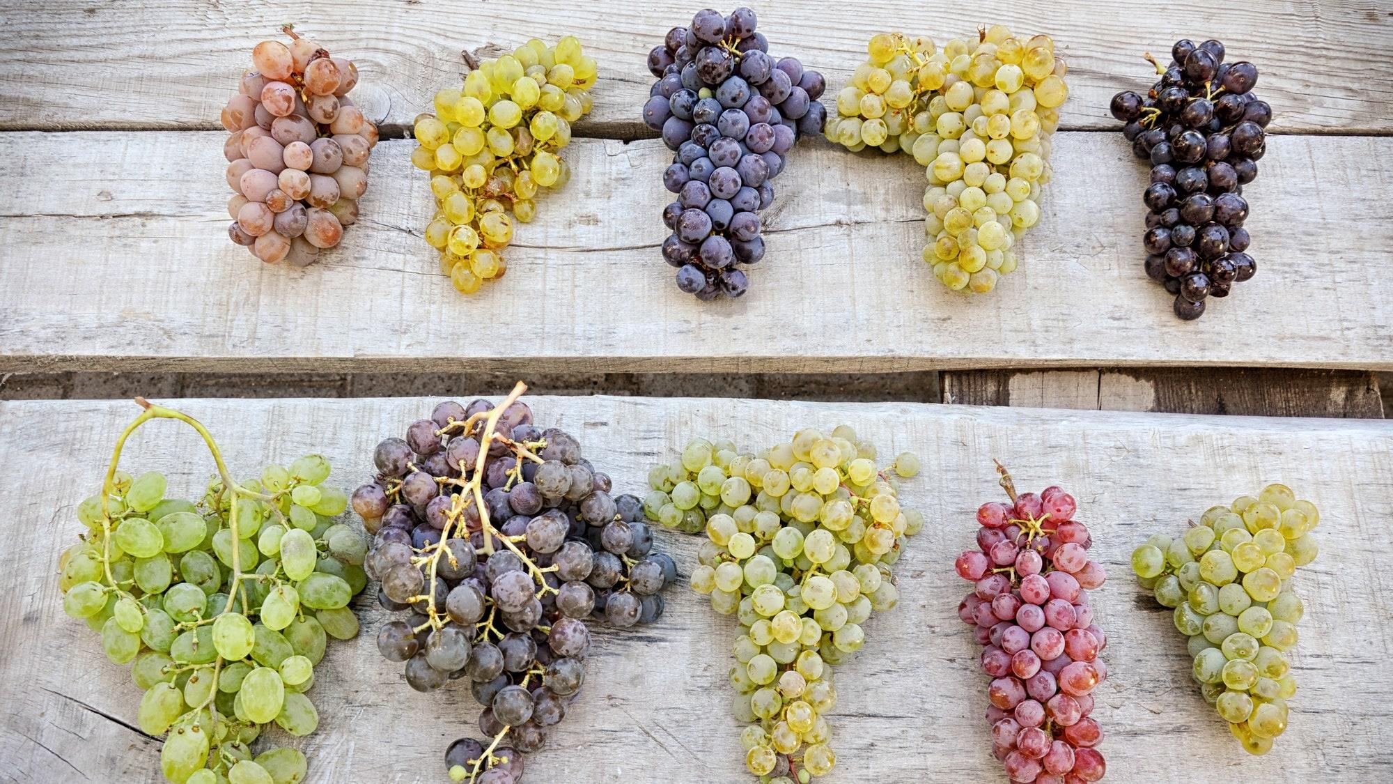 grapes_22092016_1.jpg
