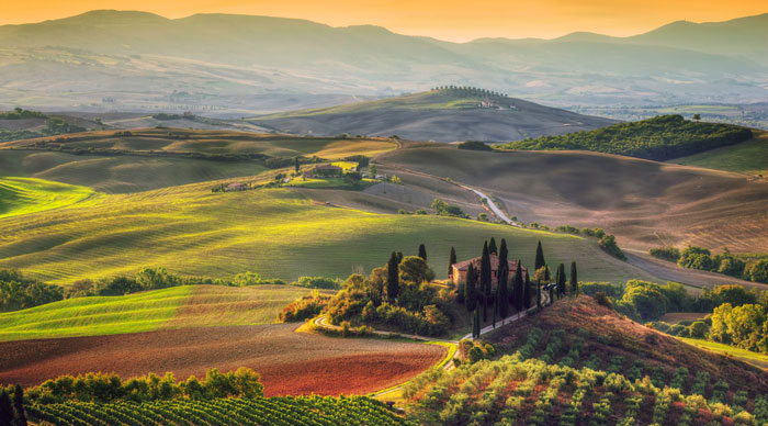 tuscany-wine-region.jpg