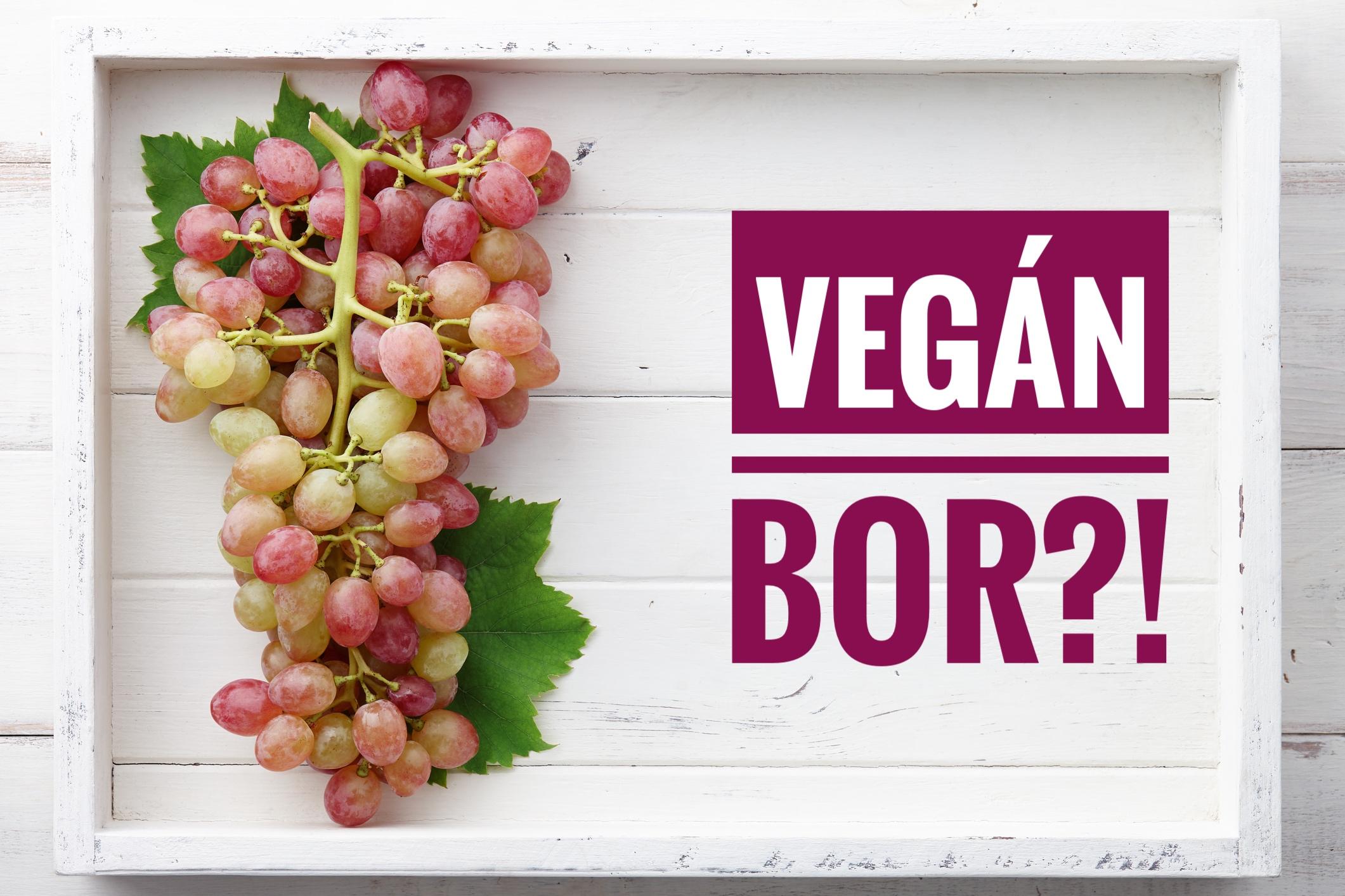 vegan_bor_1.JPG