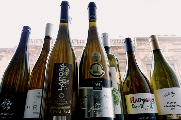 winelovers_rizlingteszt_2016_728_485.JPG