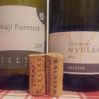 Mit mutatnak a tokaji borok 3-6 évesen II.