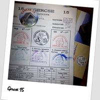 Gercse 15