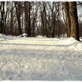 Kocogás a hóban