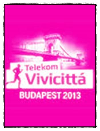 vivicitta_2013.jpg