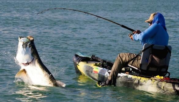 kayak-fishing-matt-harris-585x333.jpg