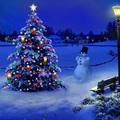 Karácsony napján
