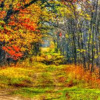 Búcsúzik az ősz