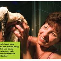 Emberségből jeles, avagy egy különleges gólyamentés története