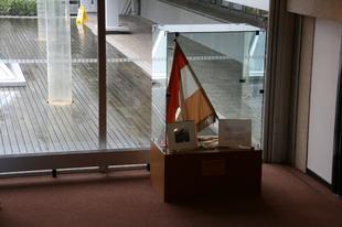 Lábjegyzet egy régi zászló alá a demokráciáról