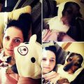 #chillin #gerbeaud #mydog