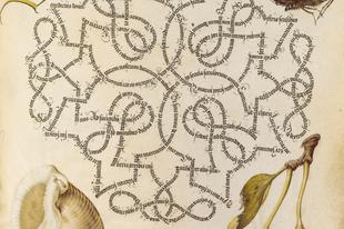 Az illuminált kalligráfus