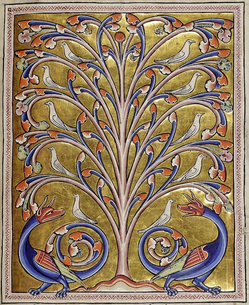aberdeen-best_f65r-perindens-tree.jpg