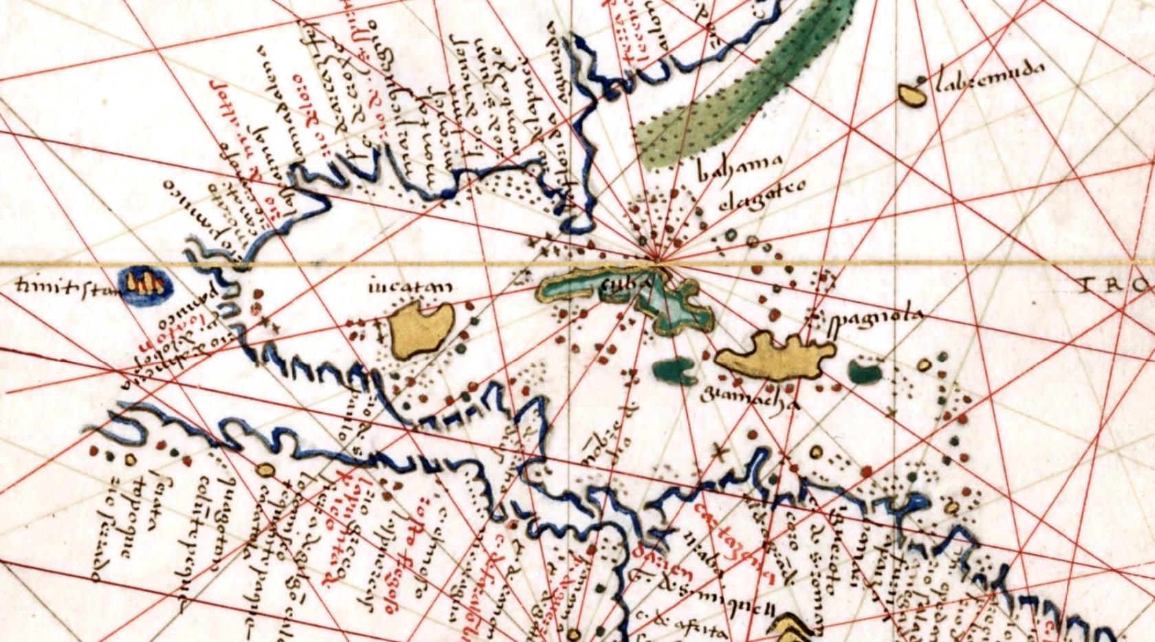 agnese-1544-detail.jpg