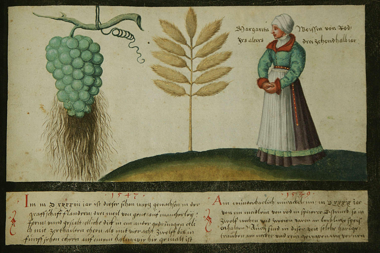 augsburger_wunderzeichenbuch_folio.jpg