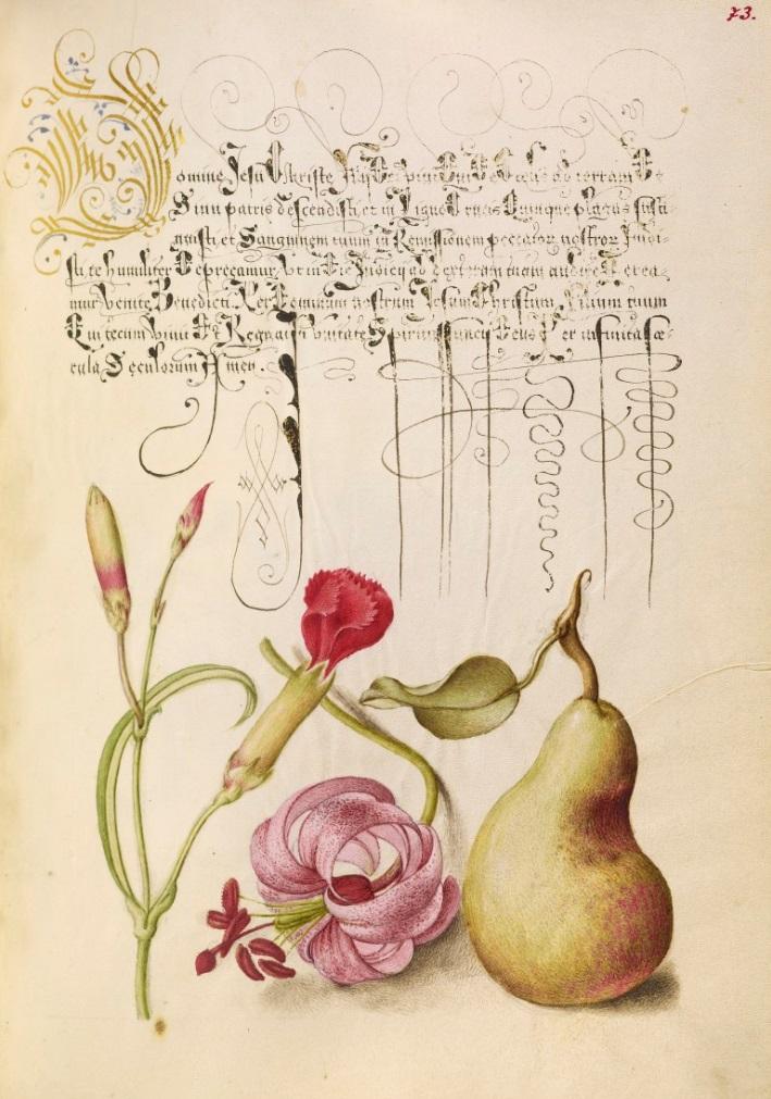 miracaligraphiaemonumenta-folio-073.jpg