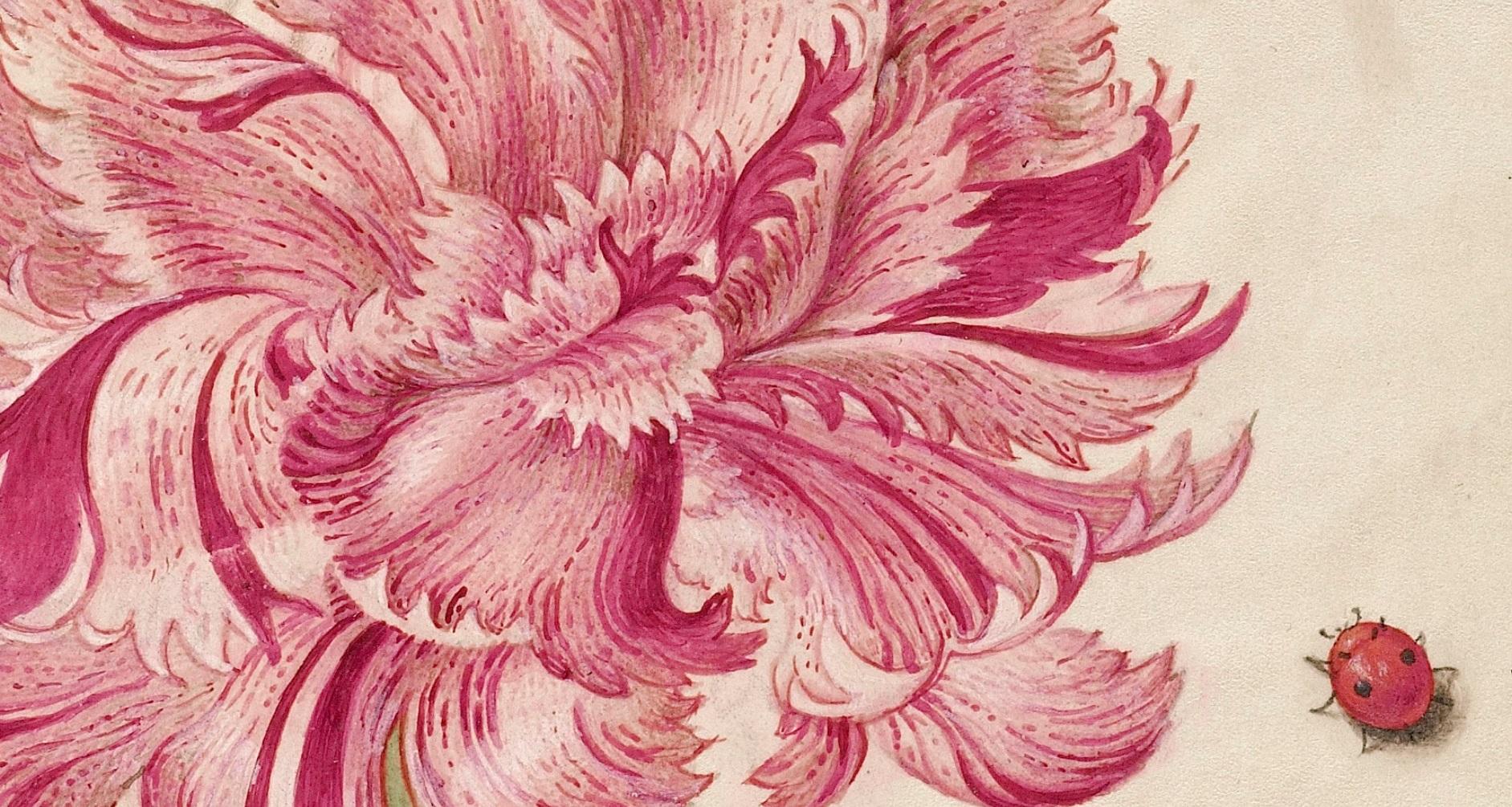 miracaligraphiaemonumenta-folio-074.jpg