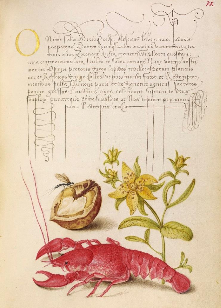 miracaligraphiaemonumenta-folio-077.jpg