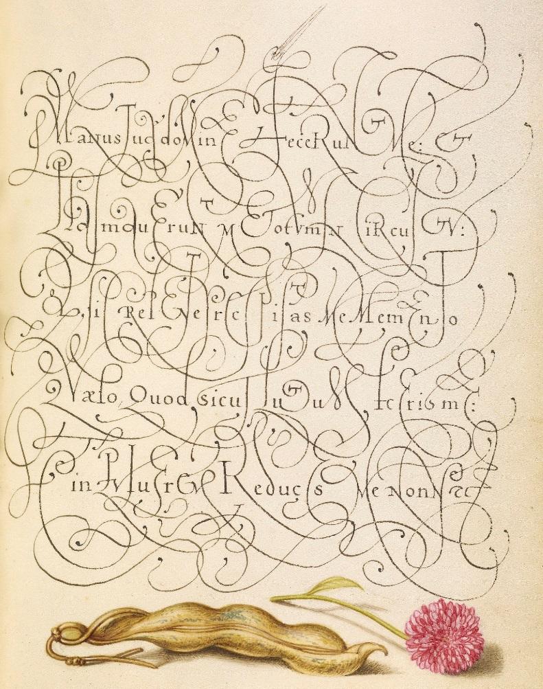 miracaligraphiaemonumenta-folio-088.jpg