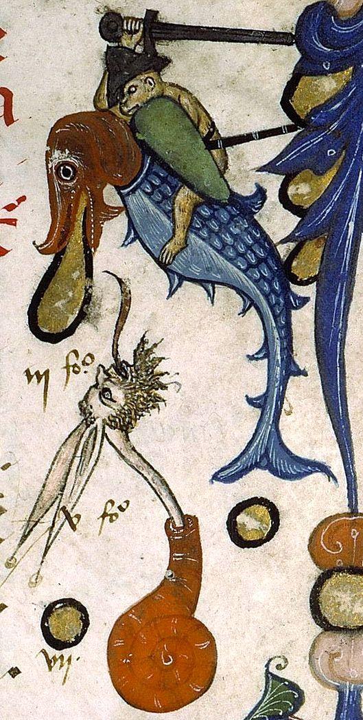monkey-on-fish-fighting-snailman.jpg
