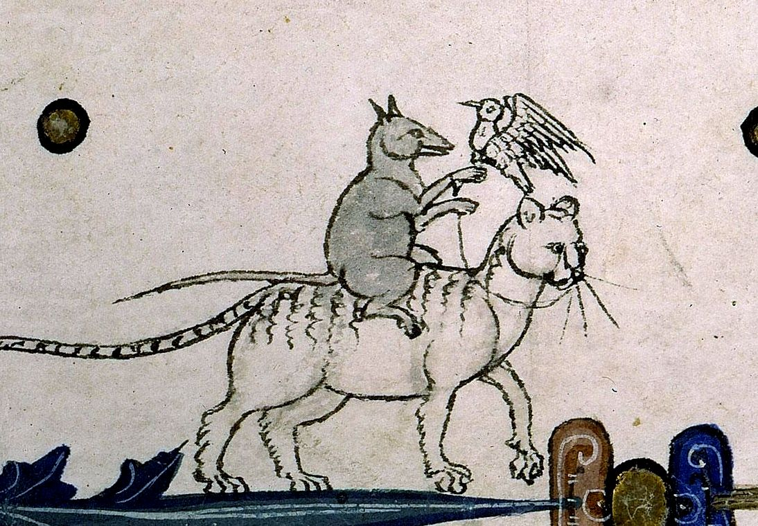 mouse-riding-cat.jpg