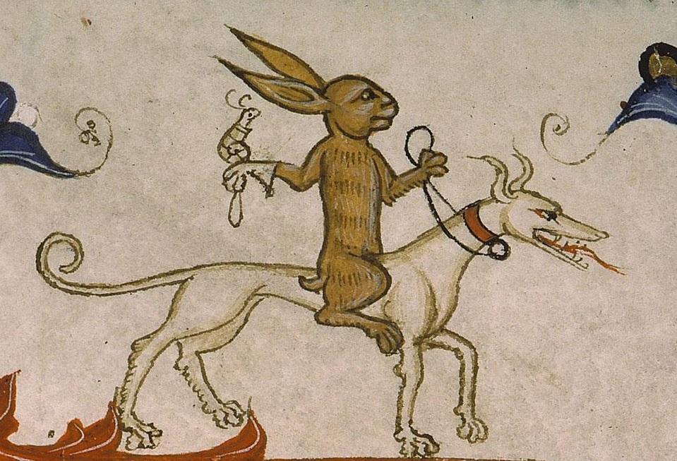 rabbit-snail-on-dog.jpg