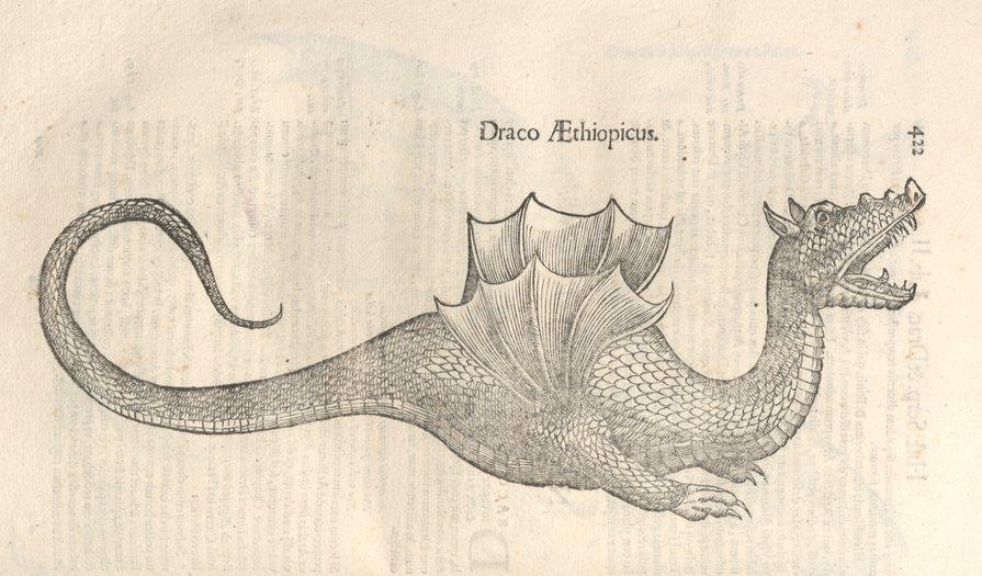 s-et-d-draco3.jpg