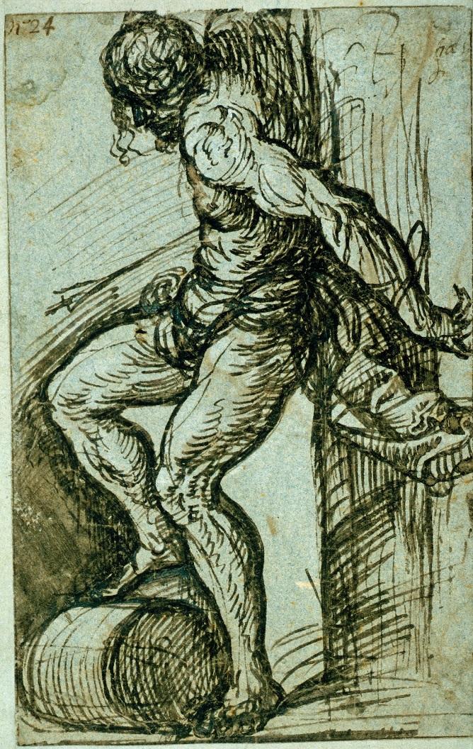 tiziano-stseb-1520.jpg