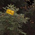 Dadakarácsony! életveszély-díszek Miskolcon!