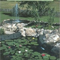 ??PORTABLE?? Water Gardens For Plants And Fish. search Beverly about junto Software Panel