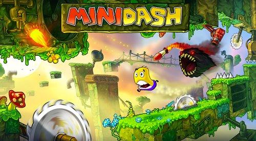 MiniDash.jpg
