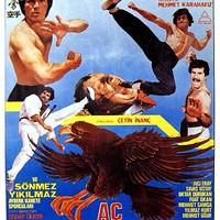 Ac kartallar (1984)