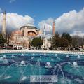 Istanbuli buli