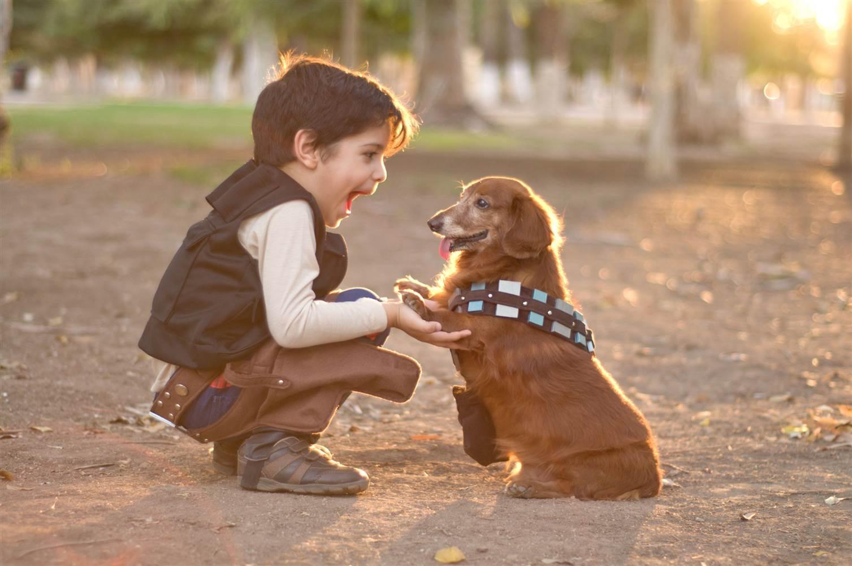 151125-kid-with-dog-yh-1230p_a1d5c6f352b67e37690c51559fbcc4cc_nbcnews-ux-2880-1000.jpg