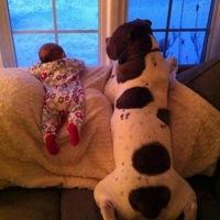 Ne legyen ebugatta kutyatartás!