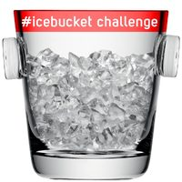 Meglesz végre az első magyar #icebucketchallenge?