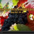 TOP magyar gasztrocsatornák a YouTube-on