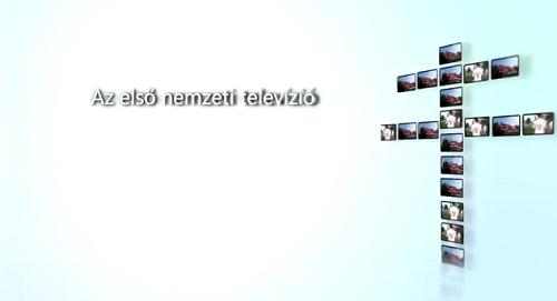 n1tv.png