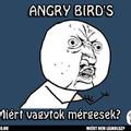 ANGRY BIRD'S