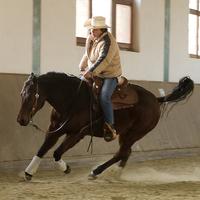 Nyílt nap: Western lovaglás és klasszikus kiképzés (IV.)