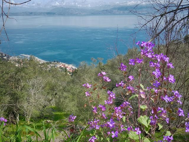 Nimfák nyomában, Korfu ösvényein (Corfu Trail) 3.Nap