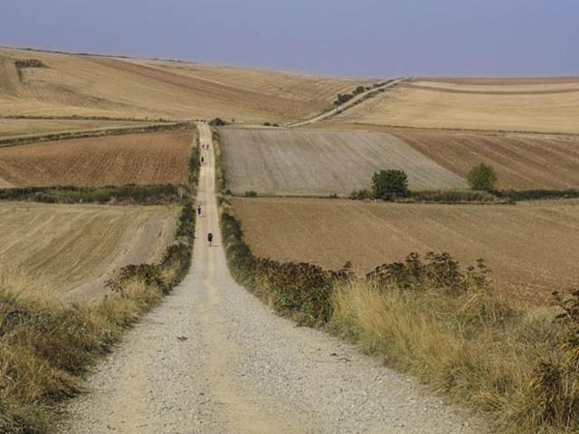 El Camino - Camino de Santiago (Szent Jakab útja) 8.Nap